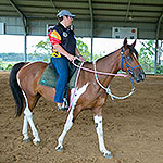 Controlling your horse's feet