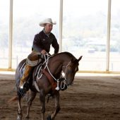 Refine your horsemanship skills